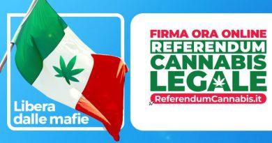 Avellino, il presidente nazionale di Più Europa per il referendum cannabis legale